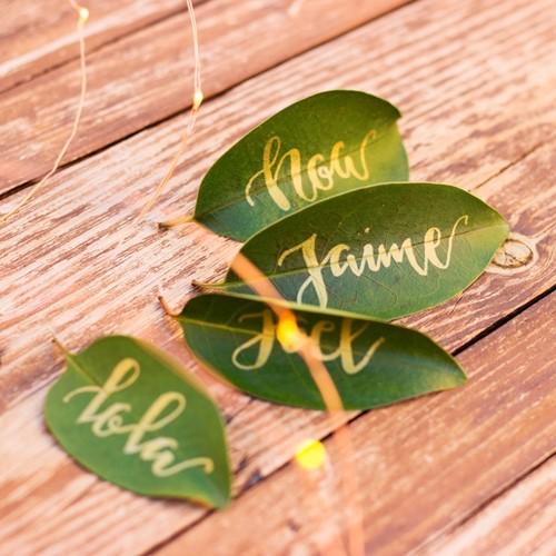 Foto de Marcasitios naturaleza y letras bonitas