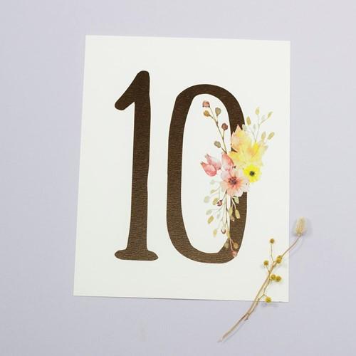 Foto de Número de mesa SELVA DE IRATI